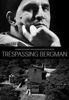 打扰伯格曼