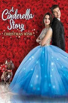 灰姑娘的故事:圣诞愿望