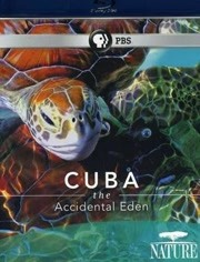古巴:意外的伊甸园