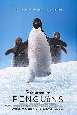企鹅2019